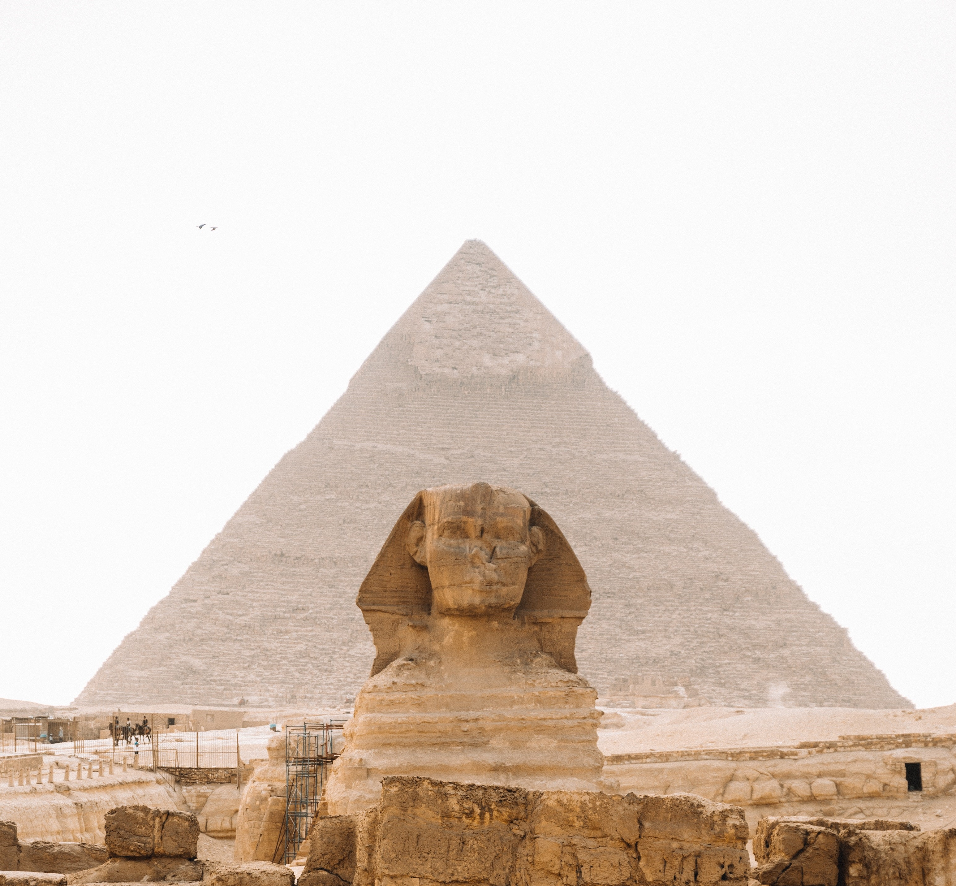 Course Image {mlang en}Exeptional in EGYPT{mlang} {mlang de}Außergewöhnlich in ÄGYPTEN{mlang}